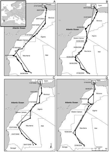 Tanferna et al. figure