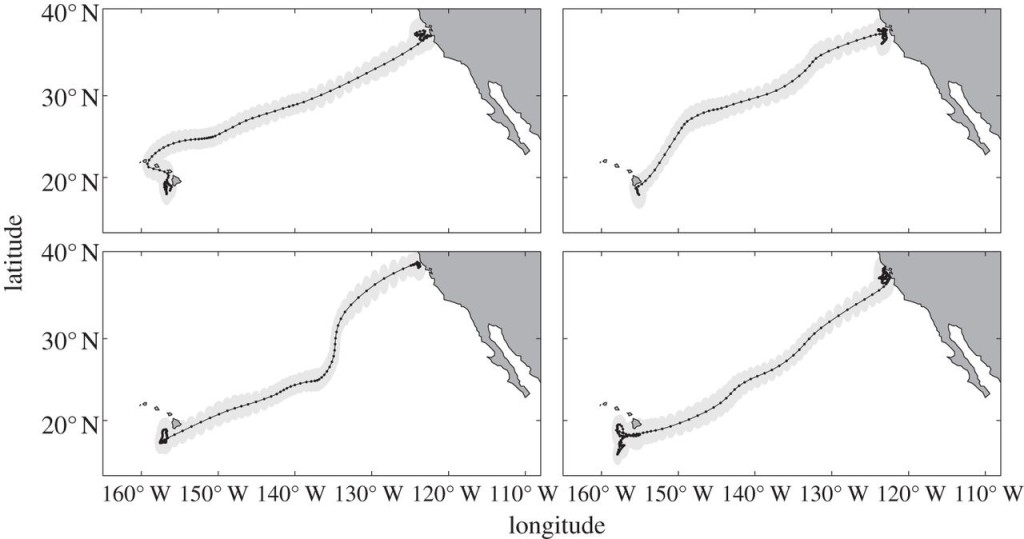 Figure 4 from Del Raye et al. (2013)