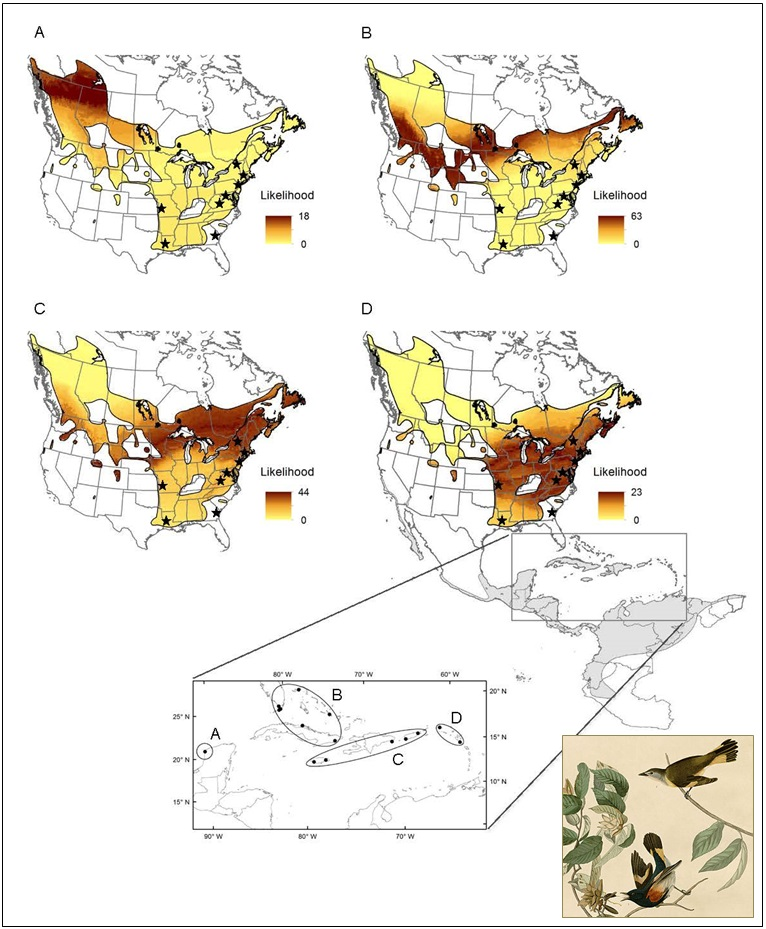 American Redstart isotope connectivity map (large)