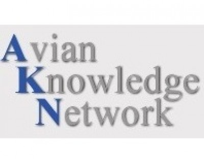 Avian Knowledge Network logo