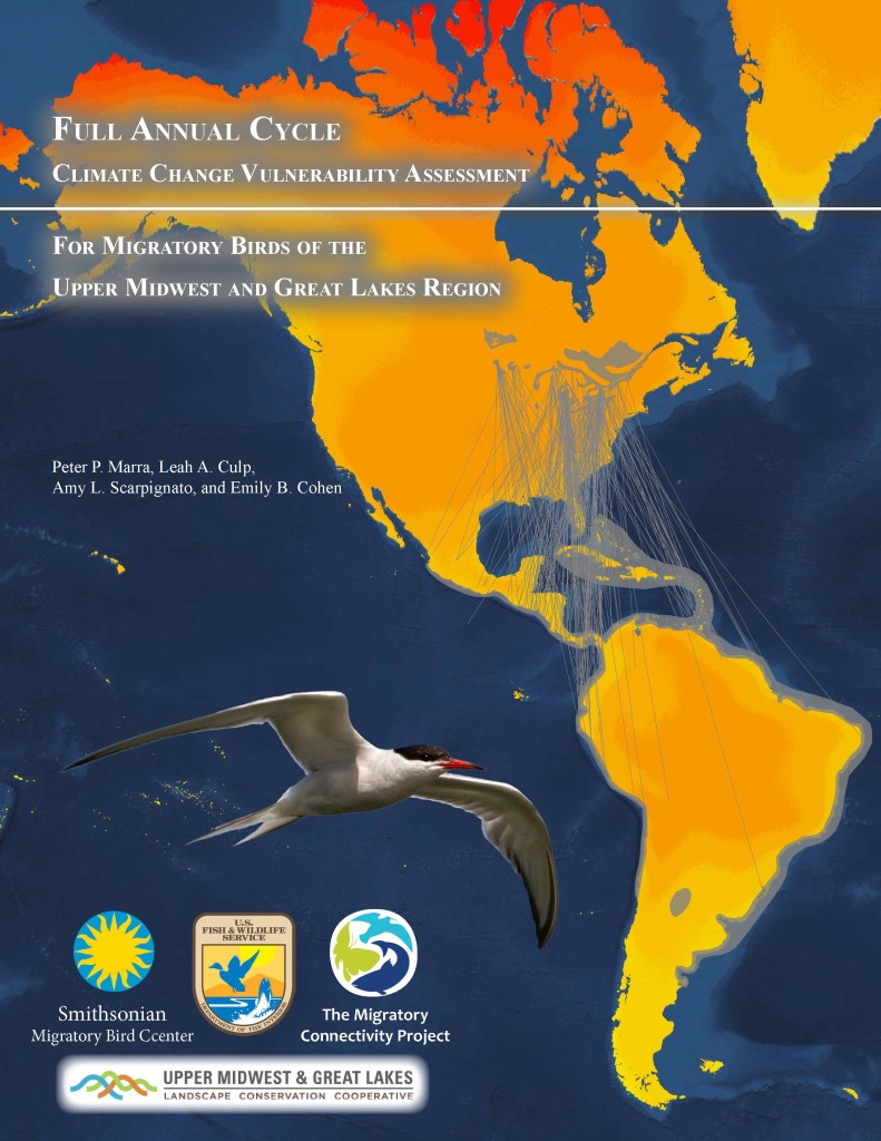 Full Annual Cycle Climate Change Vulnerability Assessment for Migratory Birds of the Upper Midwest and Great Lakes Region