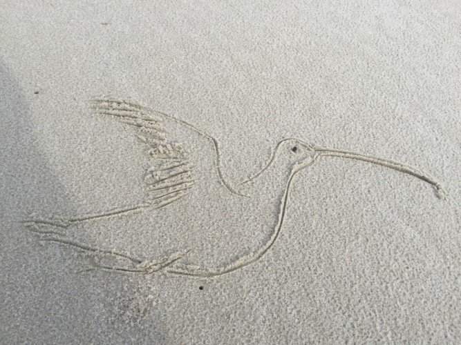 Passing the time with some good luck charms in the sand (Artwork: David Newstead)