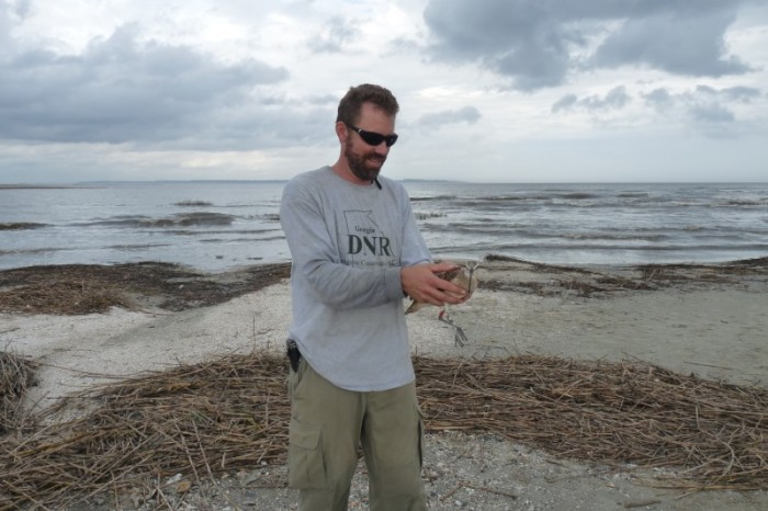Tim Keyes of Georgia Department of Natural Resources prepares to release the tagged Long-billed Curlew