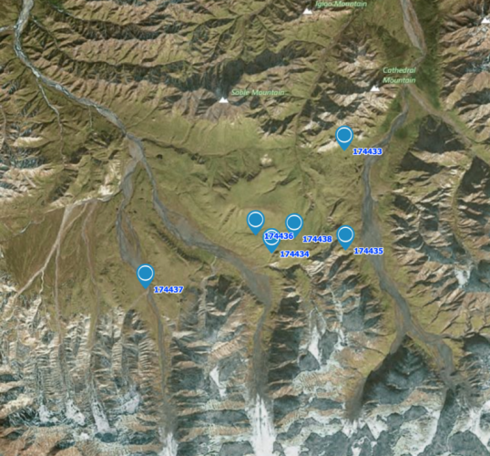 Most recent positions of six Long-tailed Jaegers in Denali National Park
