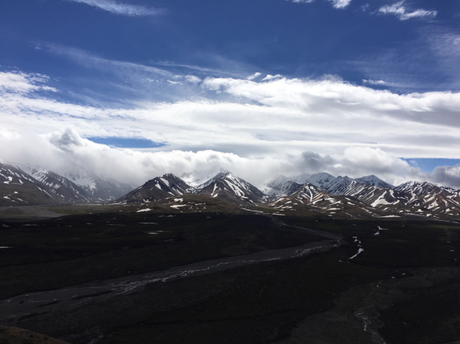 Interior Alaska in Denali National Park. Photo by Autumn-Lynn Harrison