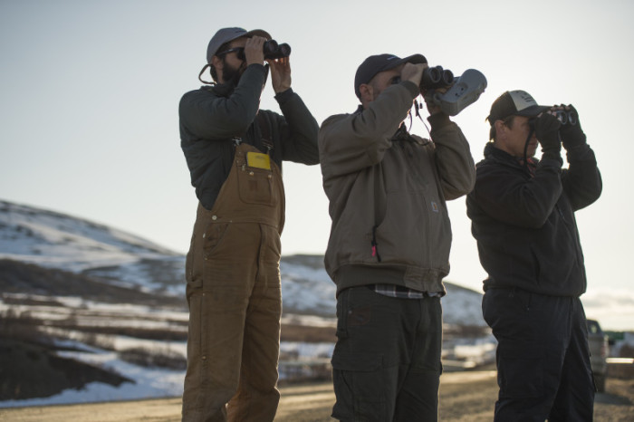 From left to right: Zak Pohlen of the US Fish and Wildlife Service, Timothy Guida and Dr. Peter Marra from the Smithsonian Migratory Bird Center. Photo: Tim Romano